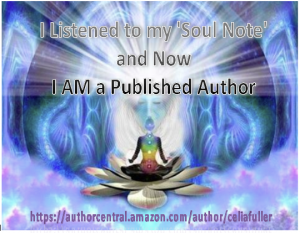 SOUL Note now I AM Author